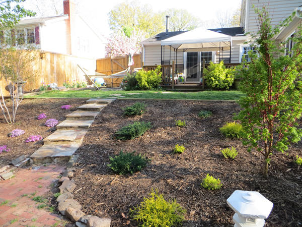 Dog-scaped yard with paths