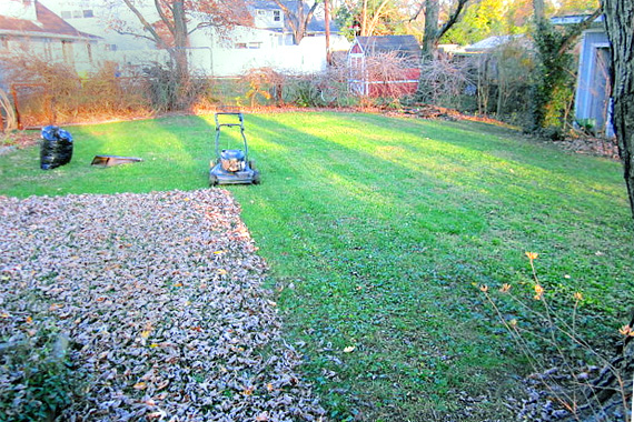 Winter Lawn Care 4 Steps To Protect Your Turf Matthew S