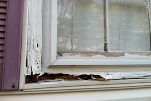 How To Prevent Wood Rot Wood Rot Treatment Houselogic